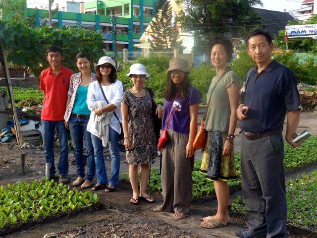 Organic City Garden